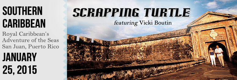 Scrapping Turtle  January 2015